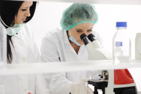 Brasil pesquisa desenvolvimento da vacina da dengue