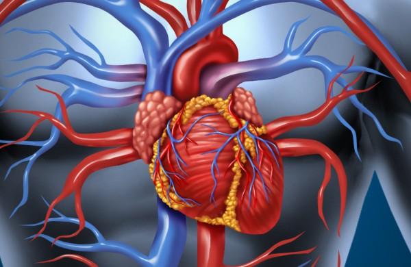 Brasil tem alta taxa de mortalidade  por insuficiência cardíaca