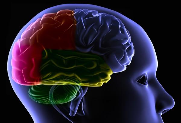 Cinco passos para manter a memória aguçada