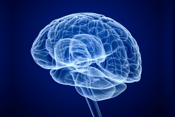 Associação Americana aprova uso de stent no cérebro para tratar AVC
