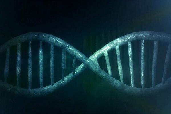 Esperados grandes avanços no tratamento do câncer para os próximos cinco a dez anos