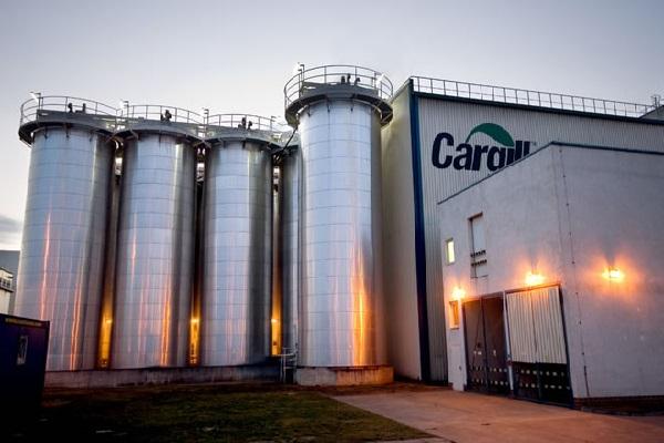 Cargill afirma que reduzirá o uso de antibióticos em bovinos
