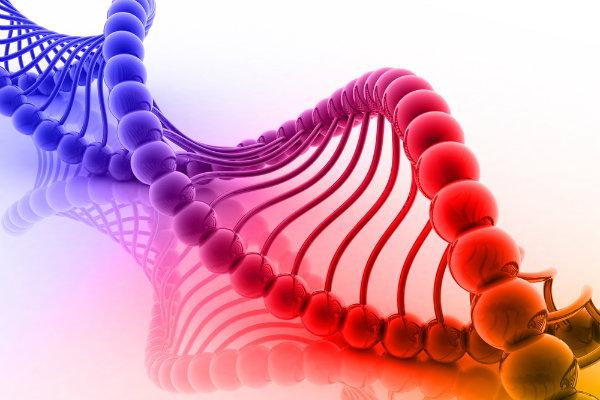 Mutação em DNA de descendentes de vegetarianos pode aumentar risco de câncer e outras doenças