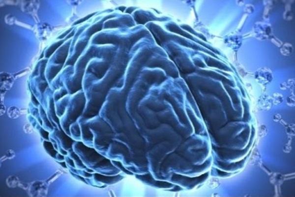 tumor+maligno+en+el+cerebral+tiempo+de+vida