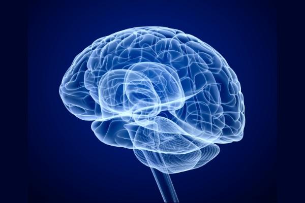 Estudo vincula efeito do estresse no cérebro a males cardíacos1