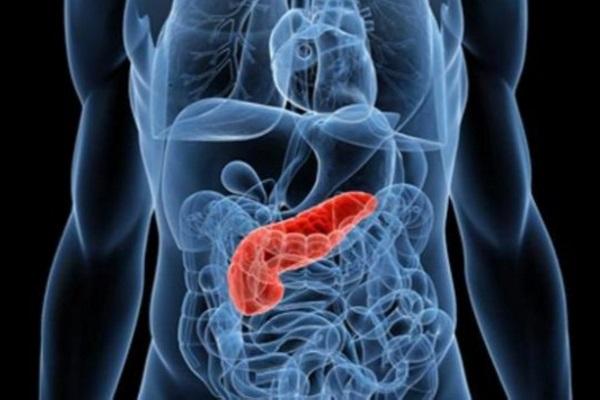 Nova possibilidade para regeneração do pâncreas