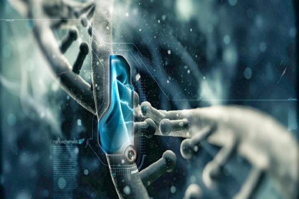 Brasileiro inventa software para facilitar diagnóstico de doenças genéticas