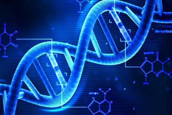 Pesquisa explica raízes genéticas de doenças raras exclusivas do sul da Ásia