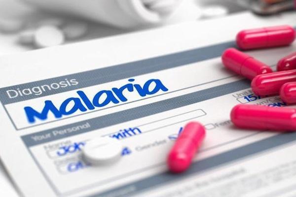 Medicamento que cura tipo de malária com dose única é aprovado nos EUA
