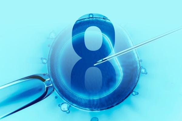 8 perguntas e respostas sobre inseminação e fertilização