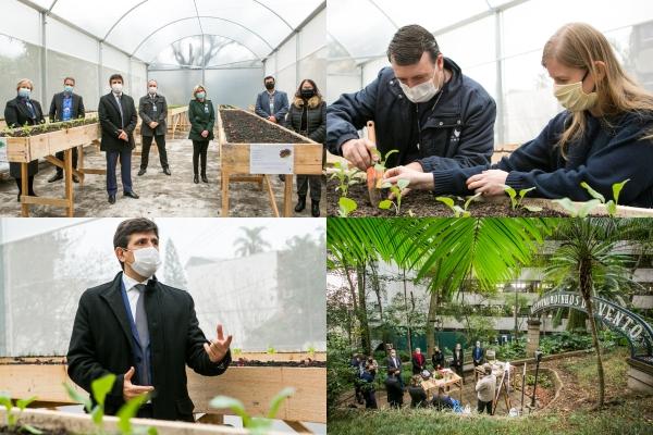 Hospital Moinhos de Vento inaugura estufa agrícola com produtos cultivados sem defensivos agrícolas